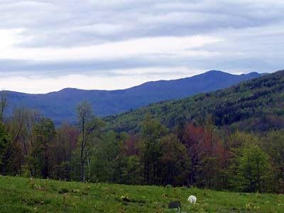 Blue Frog Farm Vermont Pasture and Mountain View
